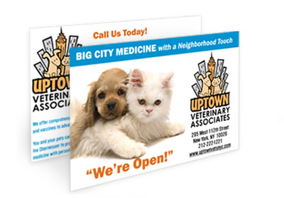 mail advertising for animal hospitals